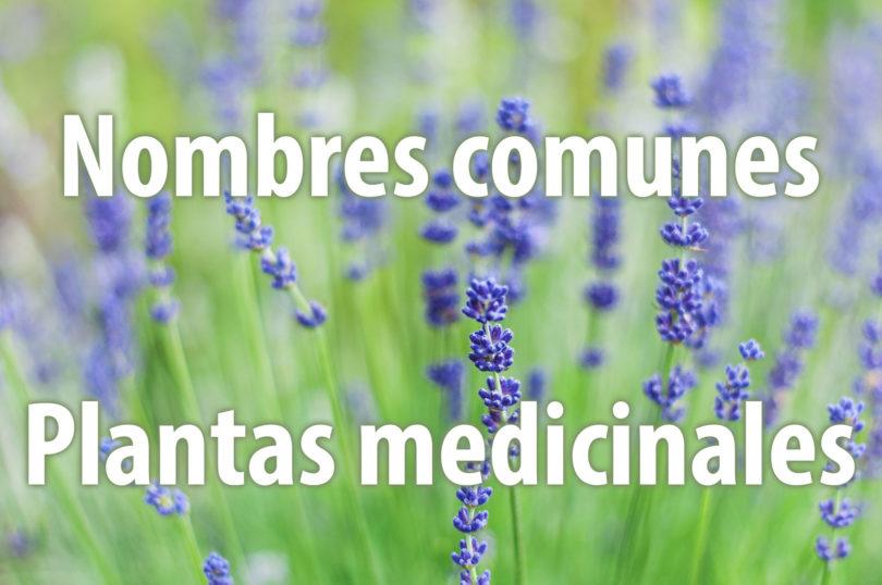 Nombres comunes de plantas medicinales